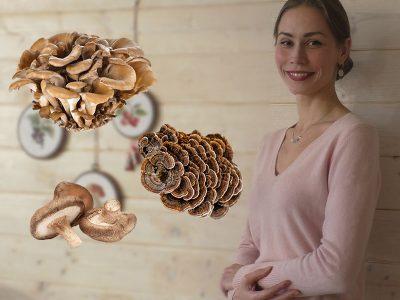 Как похудеть без диет с помощью грибов